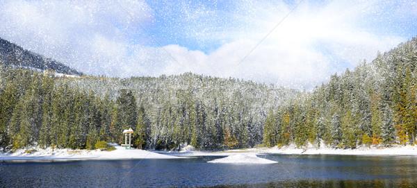 Dağ orman ilk kış kar ağaç Stok fotoğraf © byrdyak