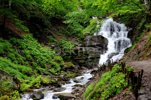 Waterval bos diep berg achtergrond regen Stockfoto © byrdyak