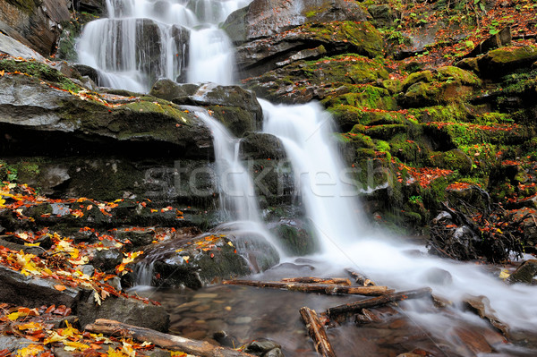 Stock photo: Mountain river in the autumn forest