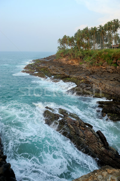 Tropisch strand palm Sri Lanka strand hemel water Stockfoto © byrdyak