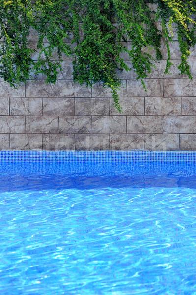 Piscina hermosa vista lujo hotel agua Foto stock © byrdyak