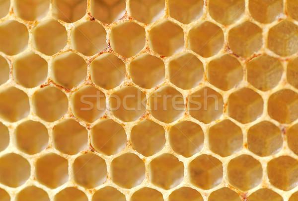 A nido d'ape birra miele naturale dolce texture Foto d'archivio © byrdyak