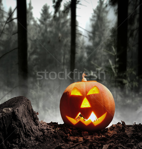 Halloween pumpkin Stock photo © byrdyak