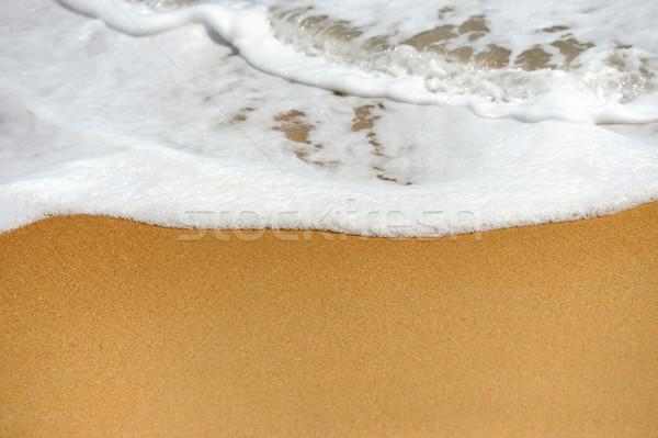 Wave of the ocean Stock photo © byrdyak