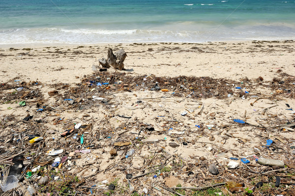 Waste on the sands causes environmental pollution Stock photo © byrdyak