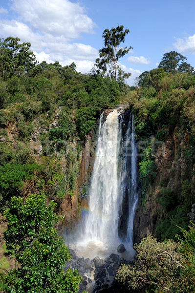 Thomson's Falls, Kenya Stock photo © byrdyak