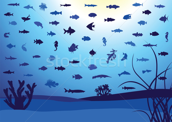 Poissons silhouettes subaquatique illustration océan aquarium Photo stock © Bytedust
