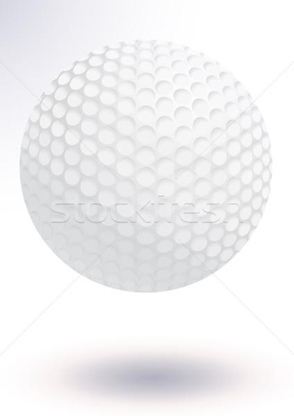 Golflabda vektor illusztráció összes tárgyak részletek Stock fotó © Bytedust