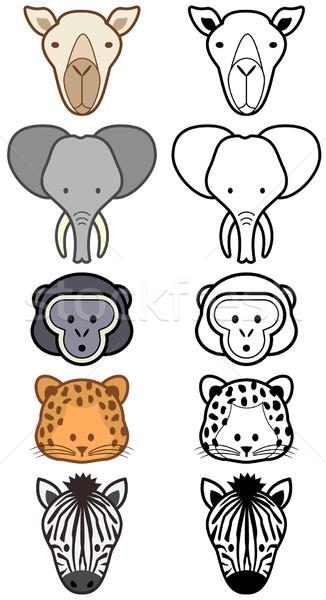 Vektor szett rajz vad állatkerti állatok különböző Stock fotó © Bytedust