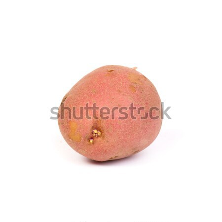 new potato Stock photo © c12