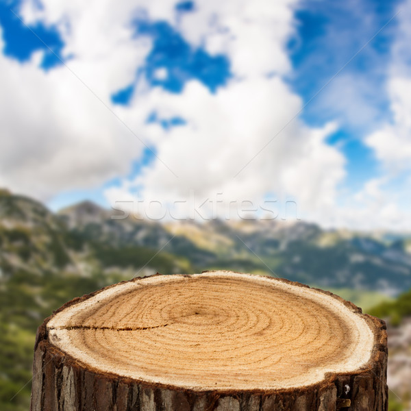 tree trunk top and mountain Stock photo © c12