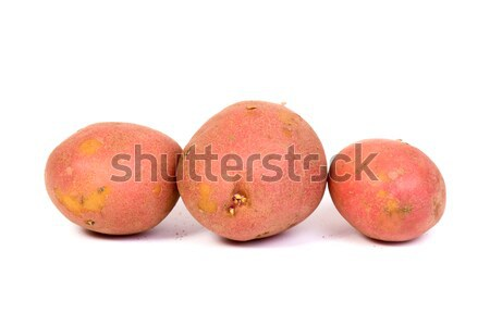 Stock photo: new potato