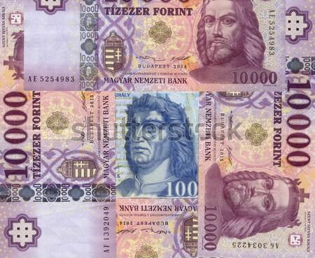Húngaro papel notas negócio dinheiro cartões Foto stock © c12