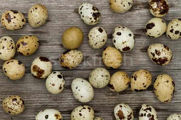 quail eggs Stock photo © c12
