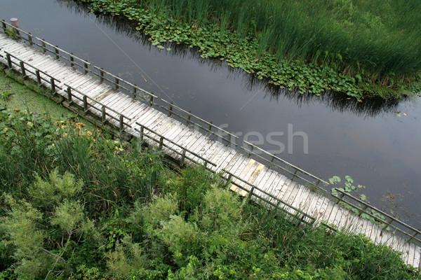 Stockfoto: Punt · park · Canada · hout · natuur