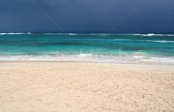 Dramatic Tropical Beach Stock photo © ca2hill