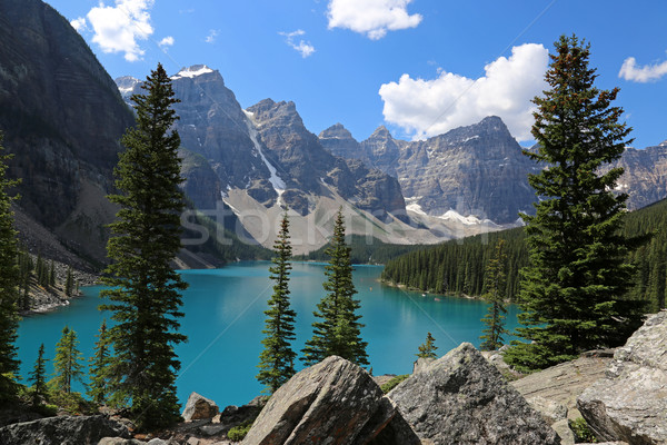 湖 堆石 壮大な 公園 水 ツリー ストックフォト © ca2hill