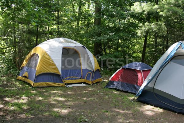 Sunlit Campsite Stock photo © ca2hill