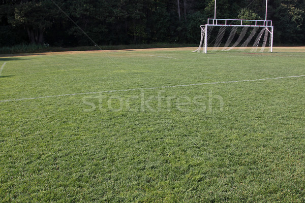 Football Pitch Stock photo © ca2hill