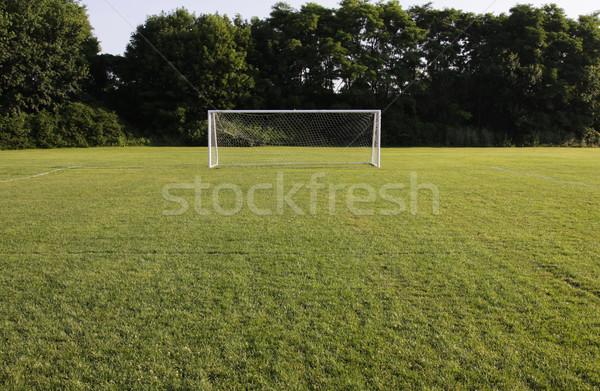 Brightly Lit Soccer Net Stock photo © ca2hill