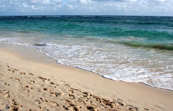 Perfect Puna Cana Beach Stock photo © ca2hill