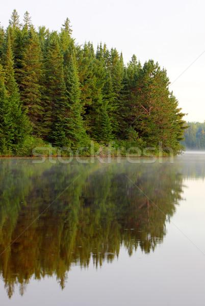 Pog Lake Reflection Stock photo © ca2hill