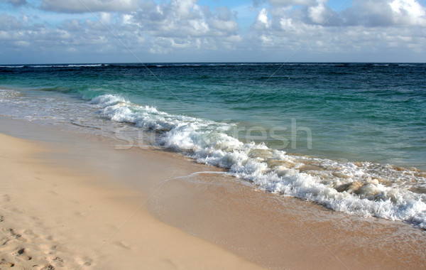 Waves Crashing on the Punta Cana Beach Stock photo © ca2hill