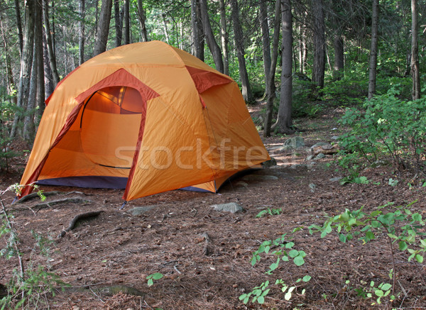 Orange Tent in a Forest Stock photo © ca2hill