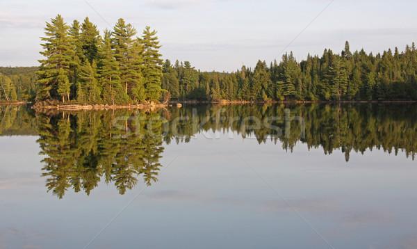 Eiland symmetrie reflectie meer park ontario Stockfoto © ca2hill