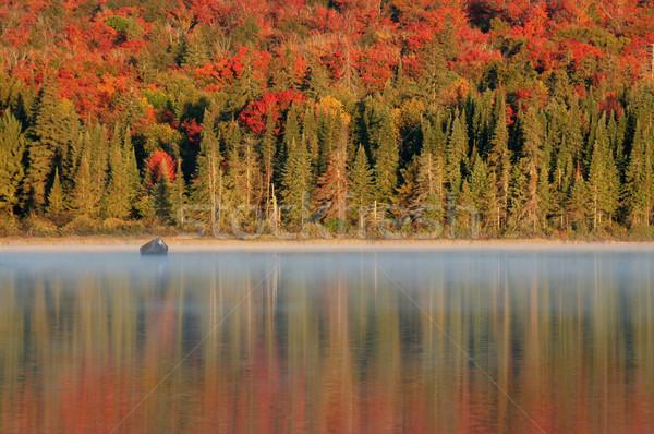 Algonquin Reflections Stock photo © ca2hill