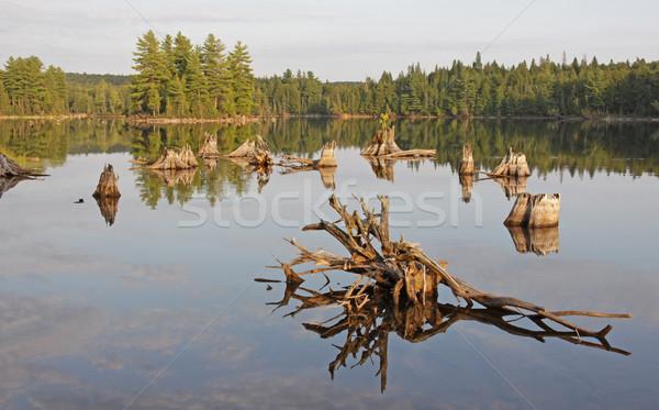 Burnt Island Reflection Stock photo © ca2hill