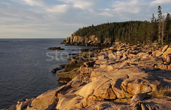Acadia Coastline Stock photo © ca2hill
