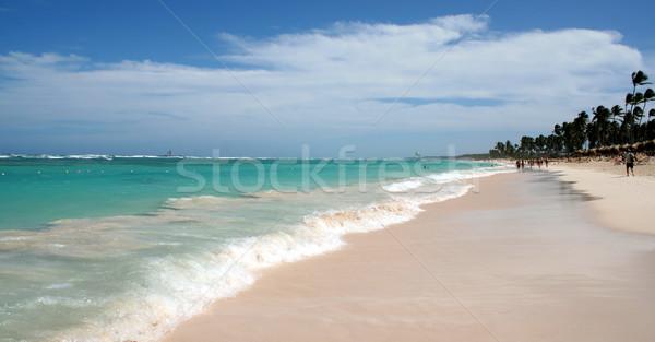 Gorgeous Punta Cana Beach Stock photo © ca2hill