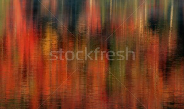 Fall Lake Reflections Stock photo © ca2hill