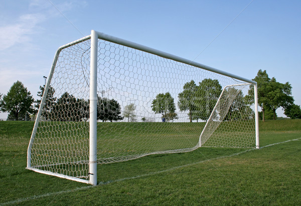 Vacant Goal Stock photo © ca2hill
