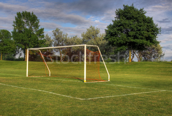 Unmanned Goal