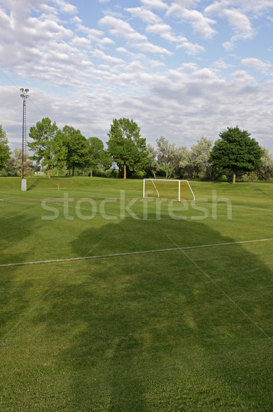 Soccer Pitch Stock photo © ca2hill