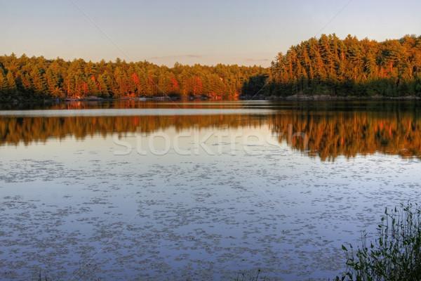Muskoka Lake at Sunset Stock photo © ca2hill