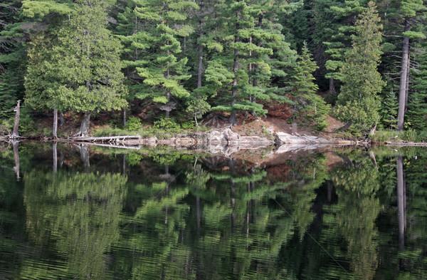 Perfect Algonquin Reflection Stock photo © ca2hill