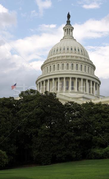 Budynku drzew zachód strona Stany Zjednoczone Capitol Washington DC Zdjęcia stock © ca2hill