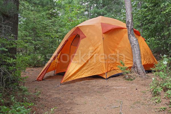 Orange Tent in Algonquin Stock photo © ca2hill