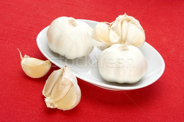 Fehér tál fokhagyma piros szövet étel Stock fotó © caimacanul