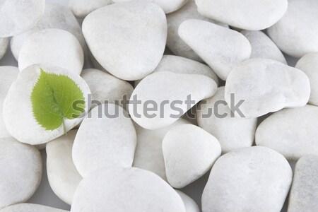 Fehér kövek közelkép kevés elöl kilátás Stock fotó © caimacanul