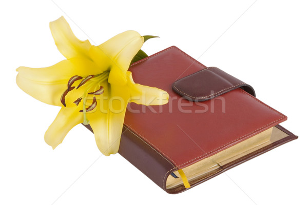 blossom yellow lily flower and notebook Stock photo © caimacanul