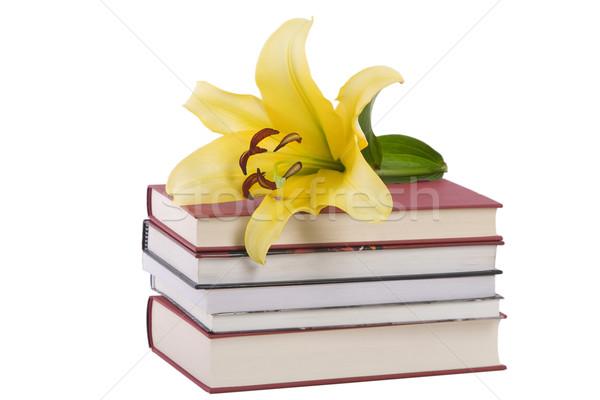Köteg könyvek citromsárga liliom virág elöl Stock fotó © caimacanul