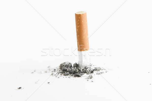 Cigarette but over white Stock photo © caimacanul