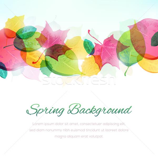 весны красочный копия пространства нижний файла формат Сток-фото © cajoer