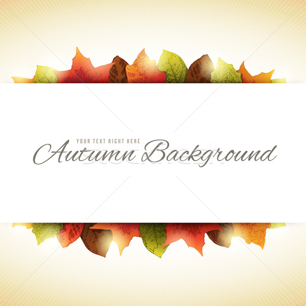 Background with Autumn Leaves and White Horizontal Copy Space in Stock photo © cajoer