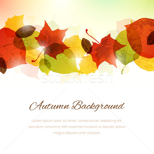 Background with Autumn Leaves at the Top and Copy Space at the B Stock photo © cajoer
