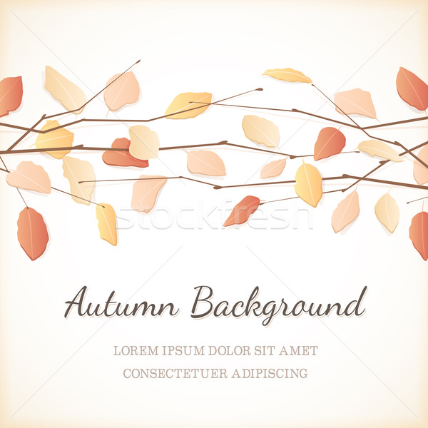 Elegant Background with Autumn Leaves at the Top Stock photo © cajoer